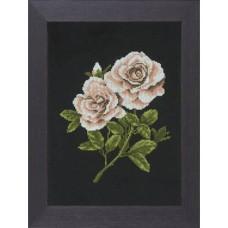 Lanarte platinum 2 witte rozen (WEB ONLY)