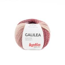 Katia Galilea Firestone (301)