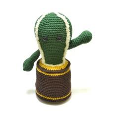 Cactus AUW Pakket